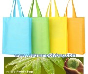 Non Woven Bag, An Effective Alternative To Replace Plastic Bags